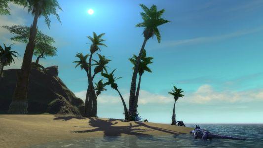 Abundant Beach