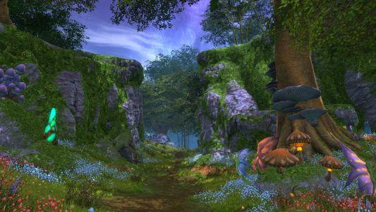 Scatherran Forest